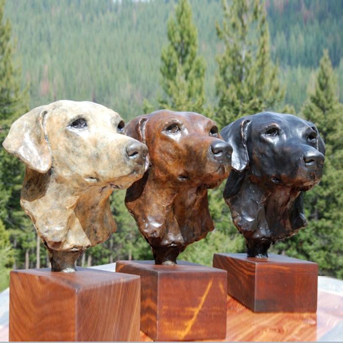 Labrador three dogs head
